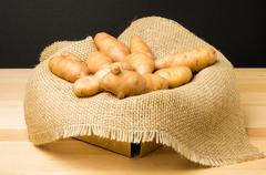 Basket of fingerling potatoes Stock Photos