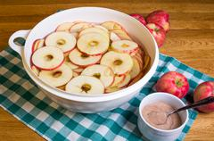 bowl of sliced apple rings with cinnamon - stock photo