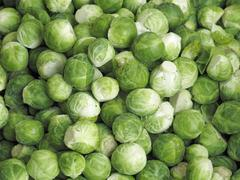 Fresh brussels sprouts (macro zoom) Stock Photos