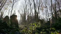 Cemetery: dolly shot across an overgrown autumnal English graveyard. - stock footage