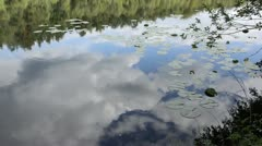 Cloud reflections on Lake Wienpitschsee, Mueritz National Park, Germany Stock Footage