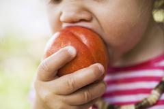 Child biting into nectarine Stock Photos