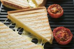 Toasted cheese sandwiches & tomatoes on grill plate (close-up) Stock Photos