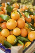 Clementines in crates at a market - stock photo