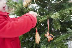 Child hanging gingerbread figures on Christmas tree out of doors - stock photo