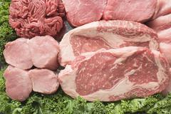 Various types of meat surrounded by parsley Stock Photos