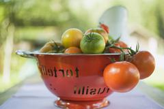 Various types of tomatoes in colander on table out of doors - stock photo