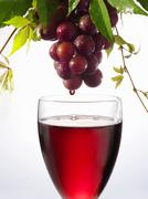 Red wine dripping from grapes into a wine glass Stock Photos