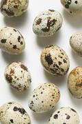 Several quails' eggs (overhead view) - stock photo