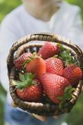 Person holding basket of fresh strawberries - stock photo