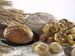 An assortment of wholemeal loaves and rolls Stock Photos