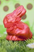 Red Easter Bunny in grass Stock Photos