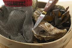 Fresh oysters in woodchip basket, oyster glove and knife - stock photo