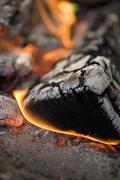 Camp-fire (close-up) - stock photo