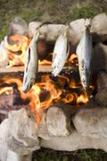 Grilling fish over camp-fire - stock photo