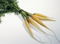 A bunch of yellow carrots - stock photo