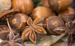 Hazelnuts and star anise (close-up) Stock Photos