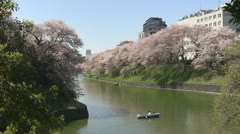 Beautiful Japanese cherry blossom with Tokyo city, Tokyo, Japan Stock Footage