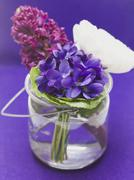 Spring flowers in a glass of water Stock Photos