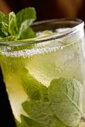 Stock Photo of Fresh Mint in Mojito