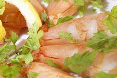 Lobster meat with chervil Stock Photos