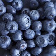 Blueberries (close-up) Stock Photos