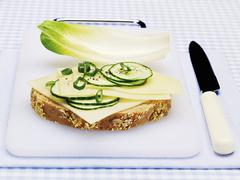 A slice of bread with cheese, cucumber and chicory Stock Photos