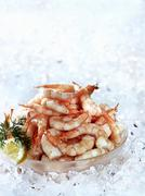 Cooked prawns in a bowl on crushed ice - stock photo