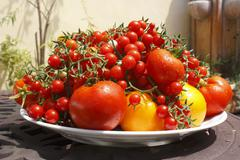 Large Platter of Various Tomatoes on Outdoor Table - stock photo
