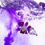 Vritz World (a purple drink made with violet) - stock photo