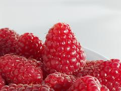 Several raspberries (close-up) - stock photo