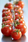 Cherry tomaattien viiniköynnöksen Kuvituskuvat