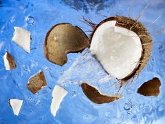 A coconut falling into water Stock Photos