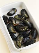 Fresh mussels in a dish Stock Photos