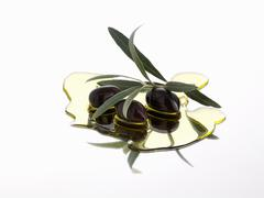Black olives and olive sprig in olive oil Stock Photos
