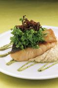 Salmon fillet on puree with fresh herbs Stock Photos