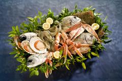 Fish and seafood in basket Stock Photos