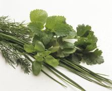 Fresh herbs (basil, dill, chives, lemon balm etc.) - stock photo