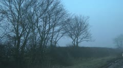 Stark trees at side of country road in winter fog - stock footage