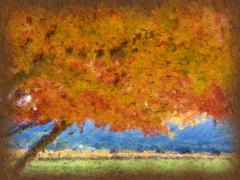 Napa Valley in the Fall Stock Illustration
