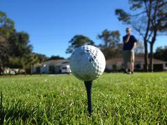 Teed Up Golf Ball - stock photo