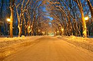 Stock Photo of night illumination on the winter alley, power