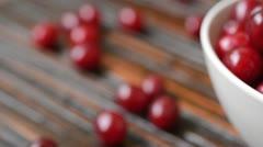 Cornelian cherry (Cornus mas) - stock footage