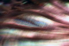 colorful nacre closeup - stock photo