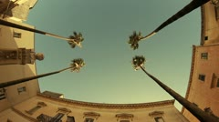 Palm trees on streets of Taranto city, Italy Stock Footage