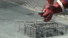 Worker checks famous 'black eggs' in Japanese hot spring Stock Footage