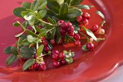 Fresh cranberries on red plate - stock photo