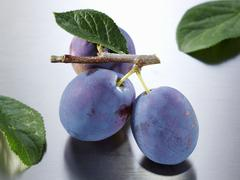Plums (variety: Hanita) with twig and leaf - stock photo