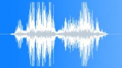 Beast voice Sound Effect