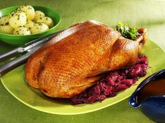 Roast goose with red cabbage Stock Photos